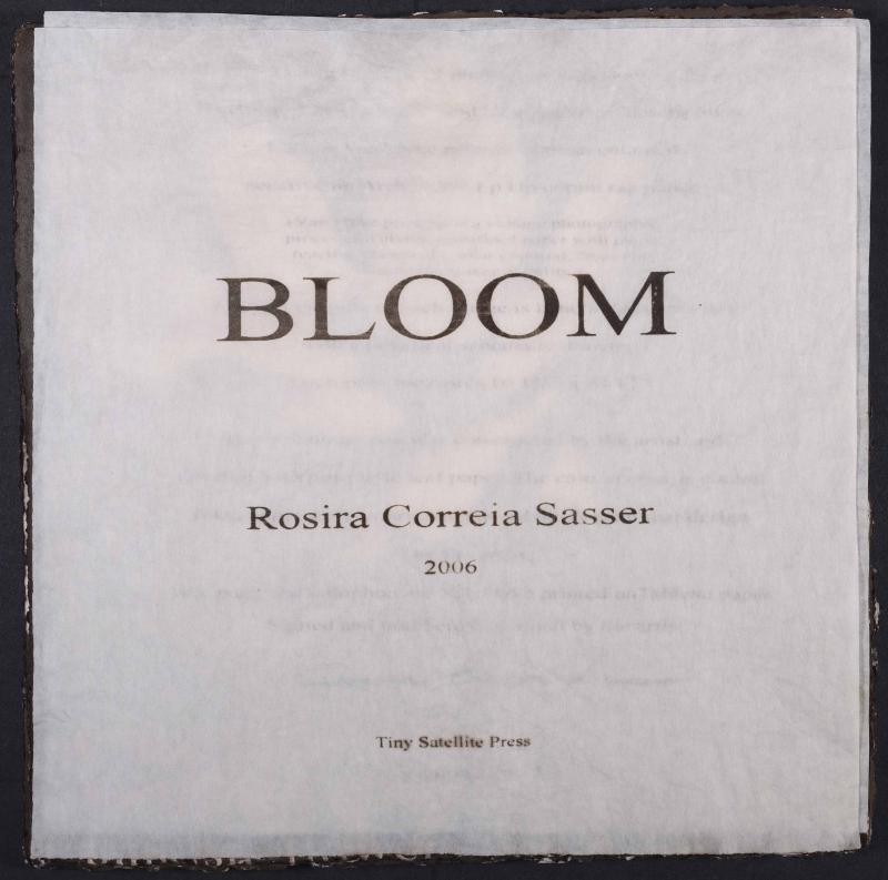 bloom_04.jpg