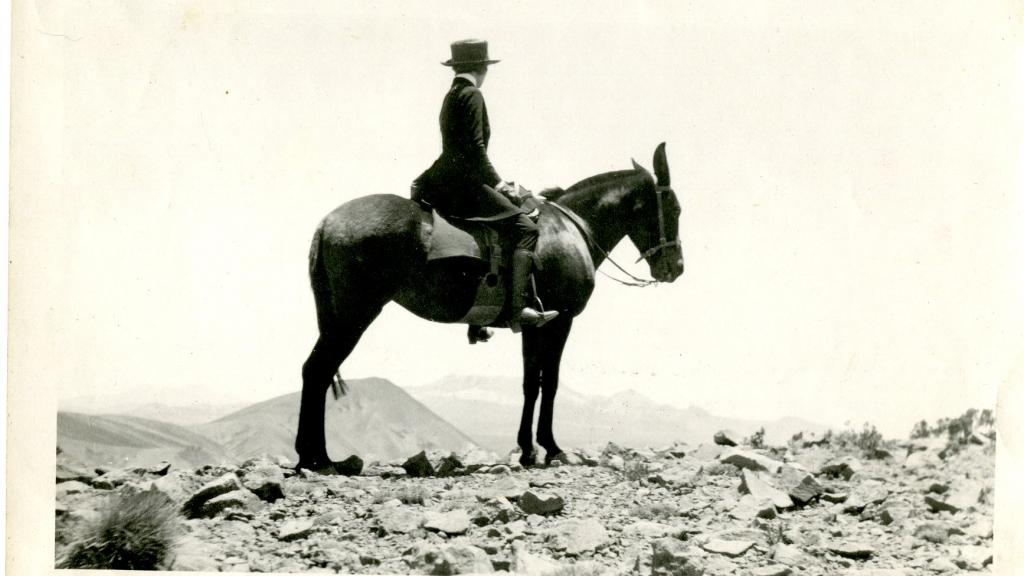 Family Member Riding a Mule