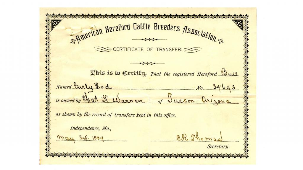 Certificate of Transfer of Cattle Issued to Charles H. Warren, May 25, 1889