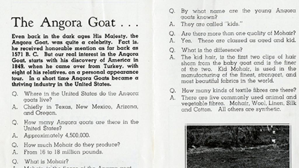 Research Information Regarding Angora Goats