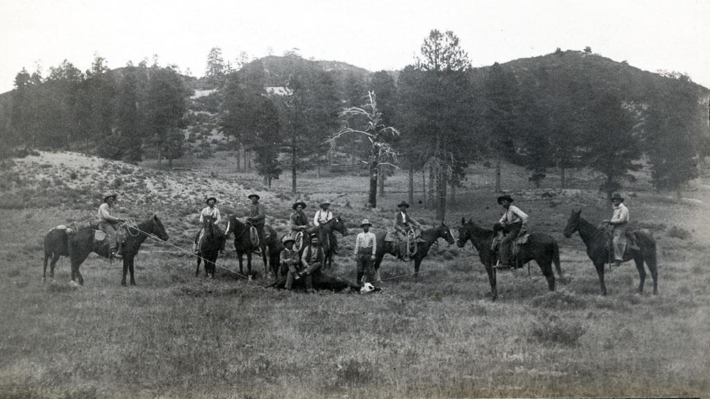 Colorado Cattle Range, Summer 1902