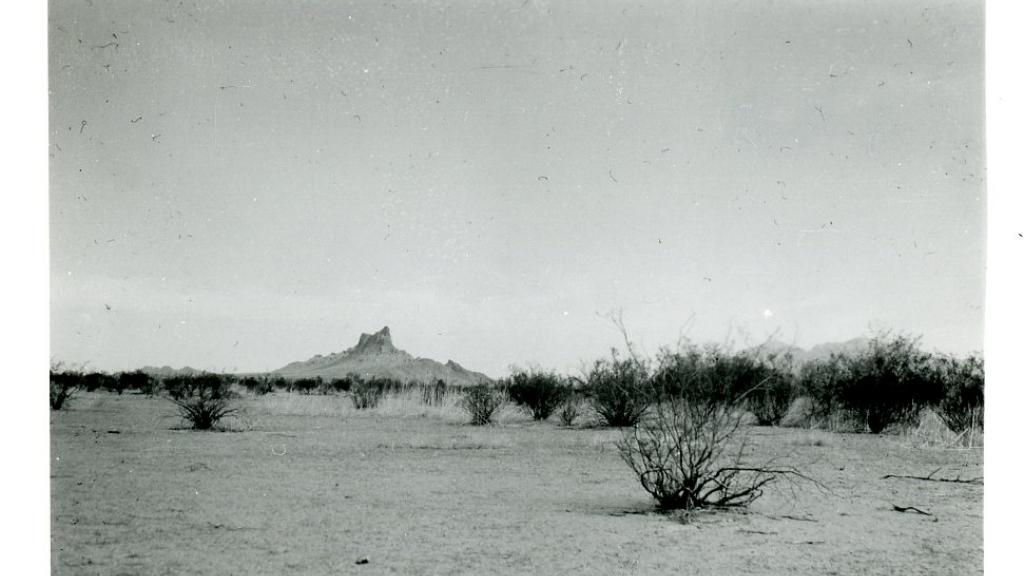 Desert view with Picacho Peak in distance