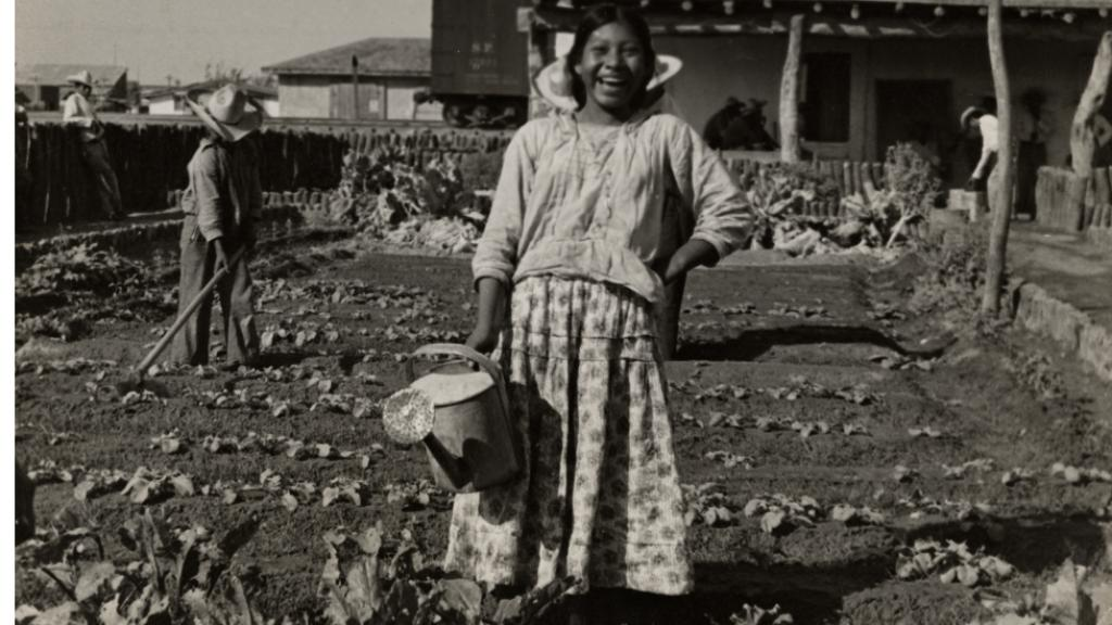 Photograph of a Yaqui Girl Gardening in Mexico, 1938-1949