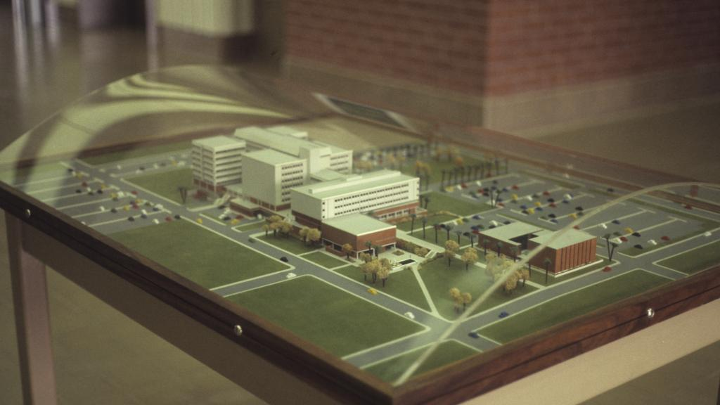 Model, Arizona Health Sciences Center