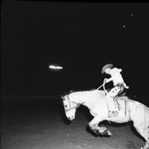 Photo of 1957 Rodeo (night)