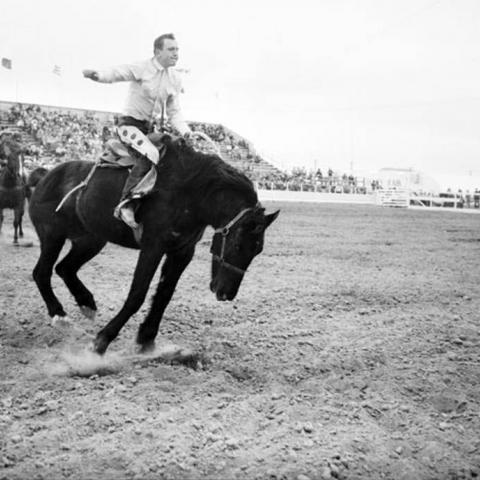 Photo of rodeo man on horse 1957