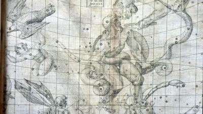 Engraved  Star Atlas in the constellation Ophiuchus, the serpent holder